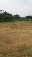 Bang Saray Beach 89963