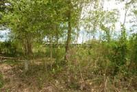 Bang Saray Soi9 63614