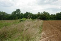 Charknok Land 56967