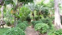 Chateau Dale Thai Bali 941683