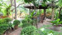 Chateau Dale Thai Bali 941686