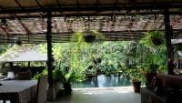 Garden Villa 992025