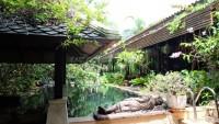 Garden Villa houses Продажа в  Наклуа