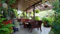 Garden Villa 992037