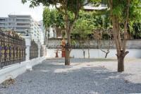 House in Pratumnak Soi 6 88991