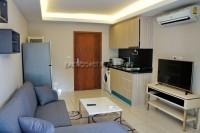 Laguna BEach Resort 94205