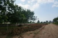 Lake Mabprachan 77701