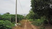 Land Baan Amphur 76681