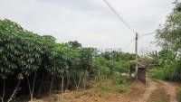 Land Baan Amphur 76684