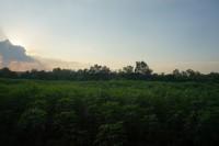 Land Charknok  569510