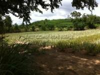 Land Huay Yai Земля Продажа в  Восточная Паттайя