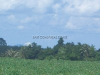 Land Nongplalai  62836
