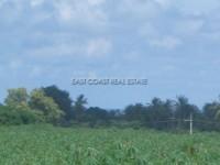 Land Nongplalai  62837