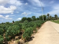 Land in Bang Saray Земля Продажа в  Восточная Паттайя