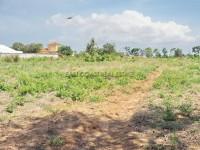 Mabprachan Земля Продажа в  Восточная Паттайя