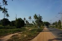 Nong Mai Kaen 92405