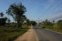 Nong Mai Kaen 92409