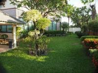 Pattaya Hill 2 98601