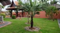 Pattaya Land and House 706025
