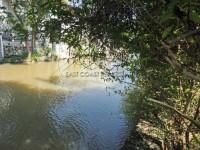 Riverside Park 908515